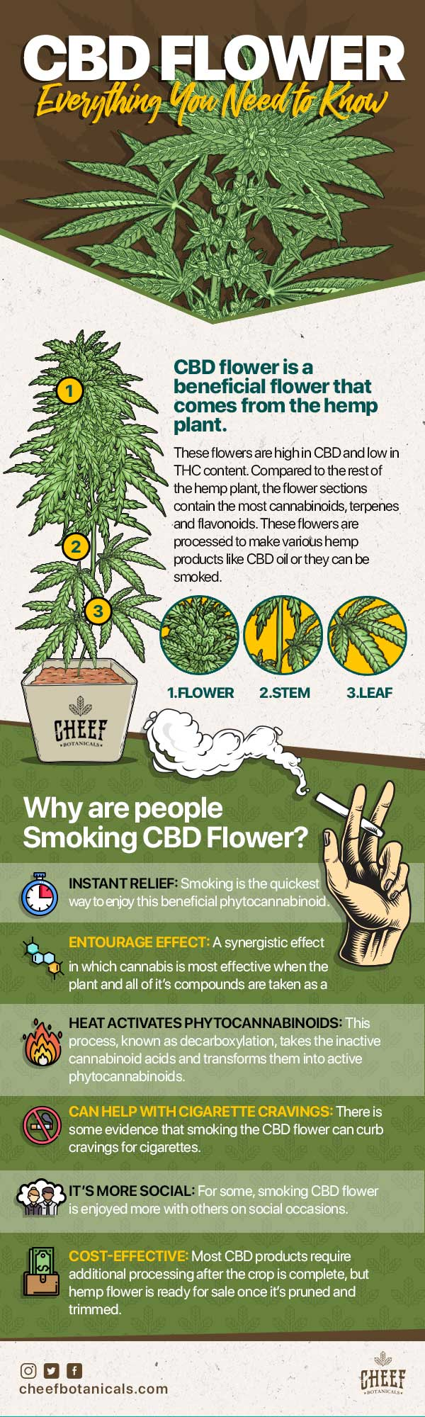 CBD flower info why are people smoking it