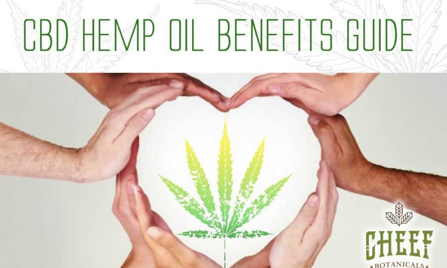 CBD Hemp Oil Benefits Guide Hands Heart Leaf