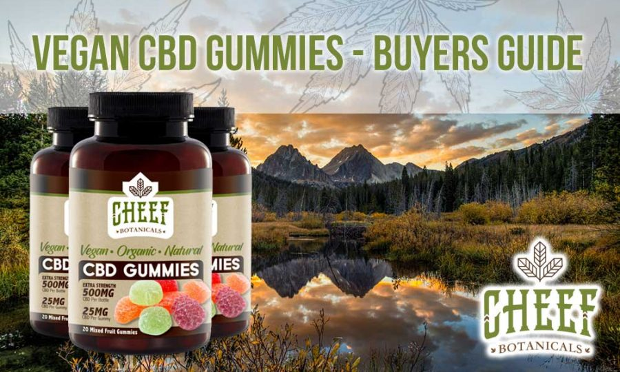 Vegan CBD Dummies Buyers Guide Cheef Botanicals