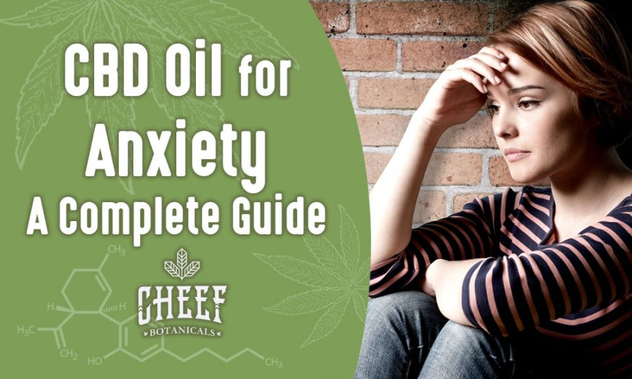 Taking CBD Oil For Anxiety – [WORKS] New Guide