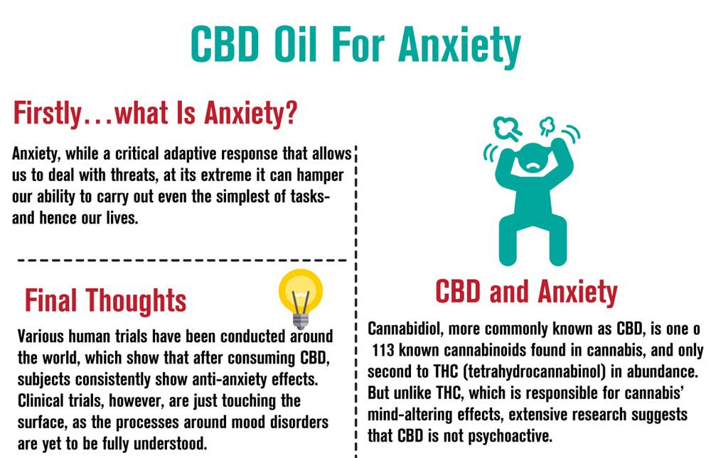 Taking CBD Oil for Anxiety - [WORKS] New Guide | Cheef Botanicals