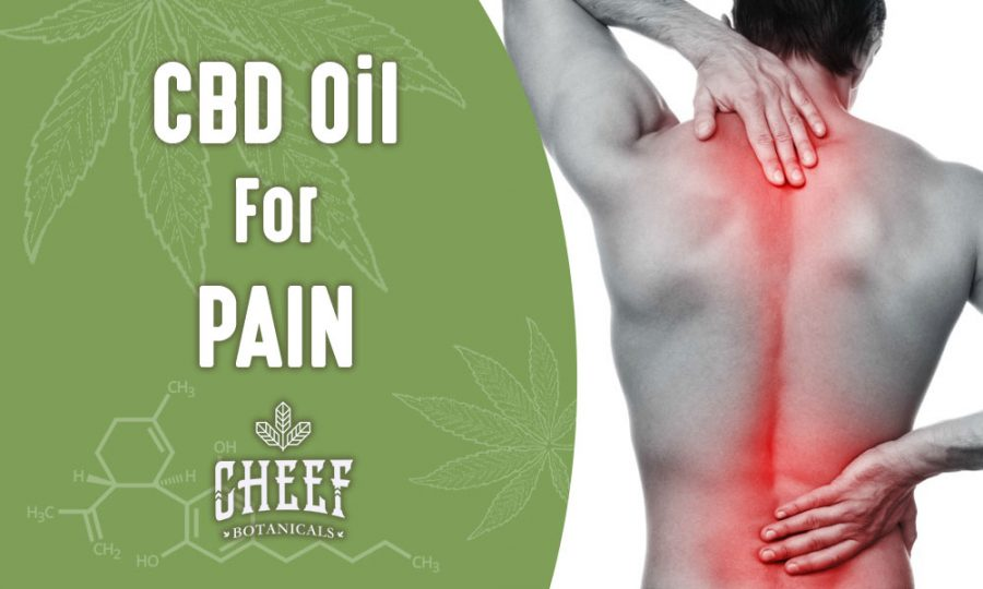 Using CBD Oil For Chronic Pain (Back, Joint, Shoulder & Neck Pain)
