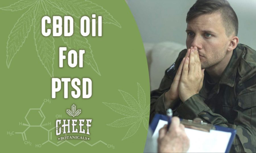 CBD For Post Traumatic Stress Disorder Works