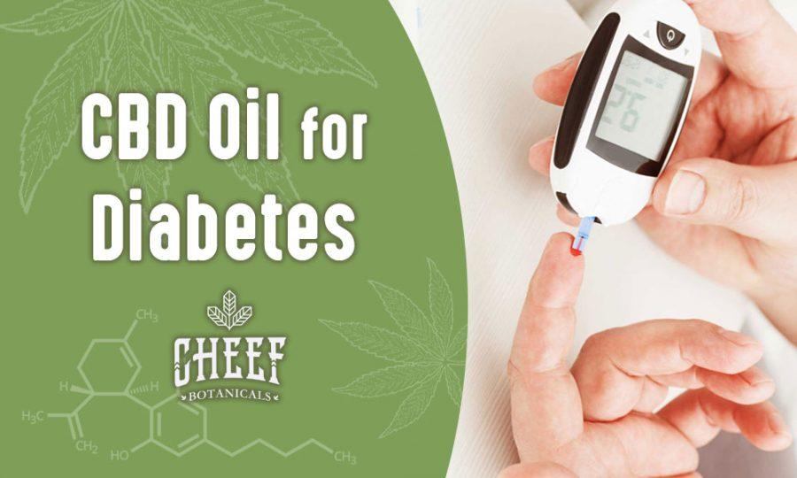 Using CBD Oil For Diabetes – Everything You Need To Know