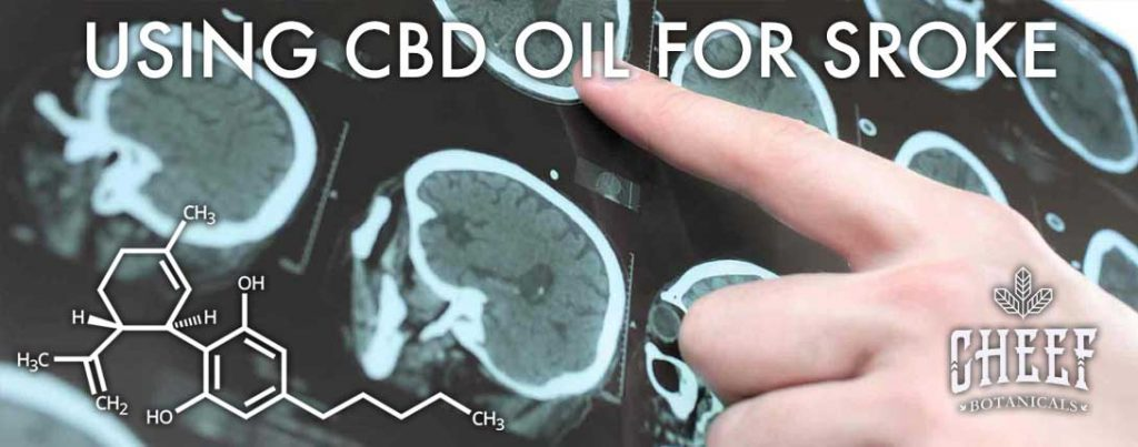 Using CBD oil for stroke banner 1