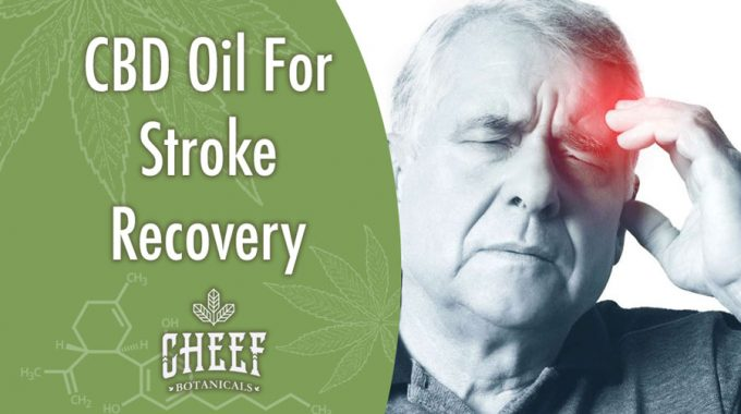 Using CBD Oil For Stroke Recovery In Patients