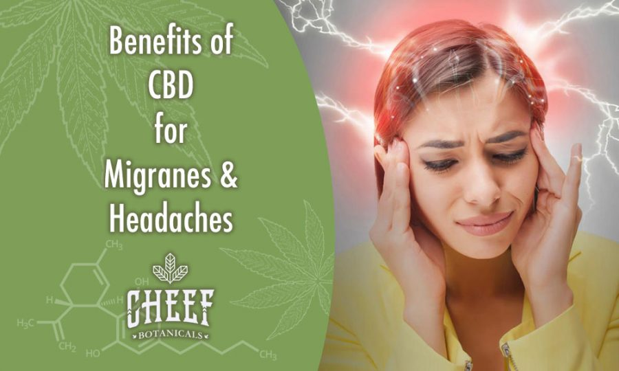 The Benefits Of CBD For Migraines & Headaches [NEW STATS]