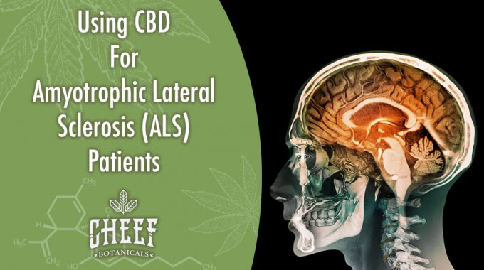 CBD For ALS Symptoms Brain Scan