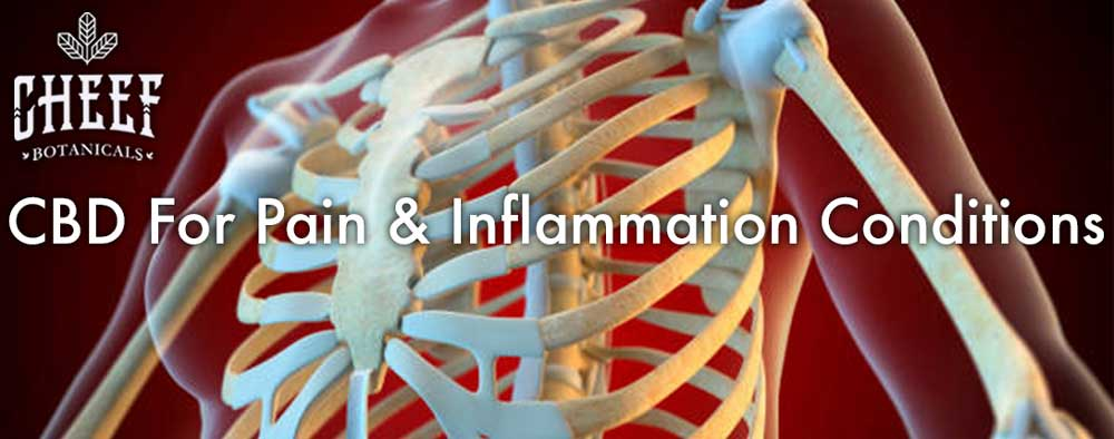 CBD for pain and inflammation conditions chest x-ray