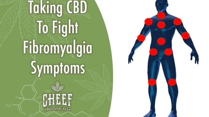 Taking CBD To Fight Fibromyalgia Symptoms Pain Symptom Locations