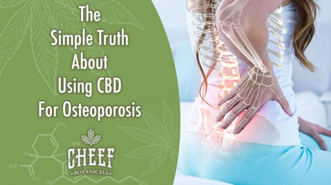 CBD For Osteoporosis: Immediate Treatment & Prevention