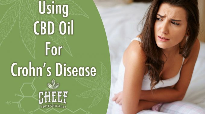How To Use CBD Oil For Crohn's Disease [2019 UPDATE]