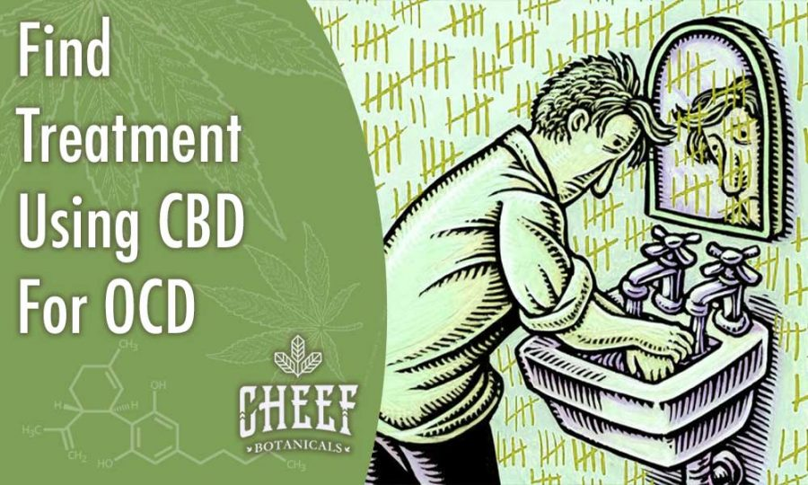 Find Treatment Using CBD For OCD [Effective & Natural]