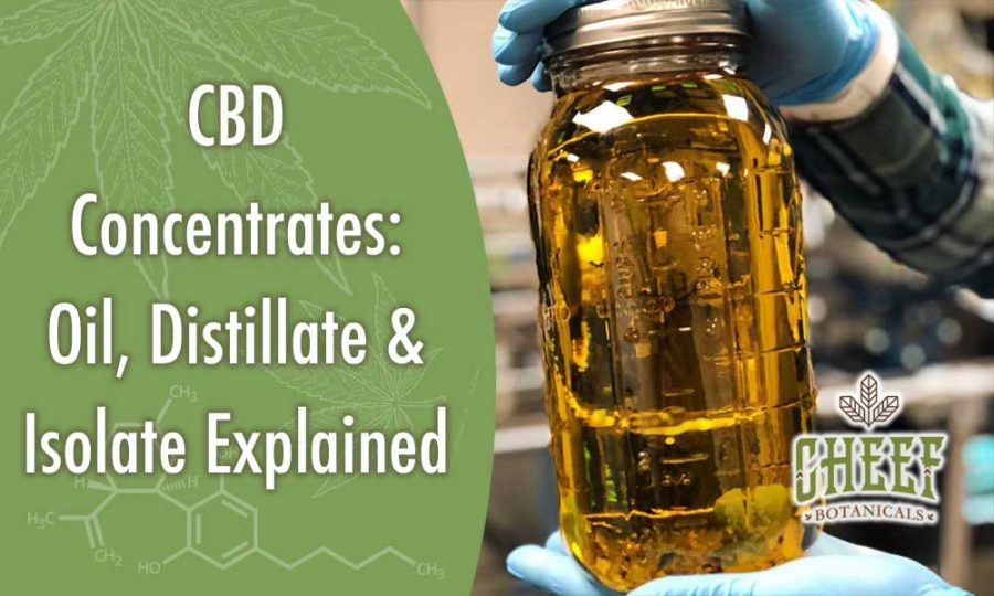 CBD Concentrate [CBD Oil, Distillate & Isolate Explained]