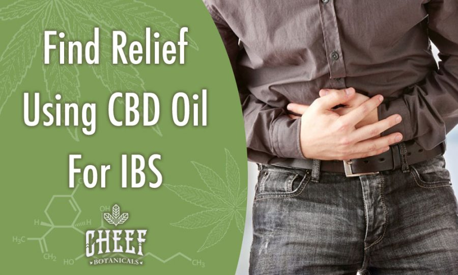 CBD Oil For IBS [The Key To Relief?]