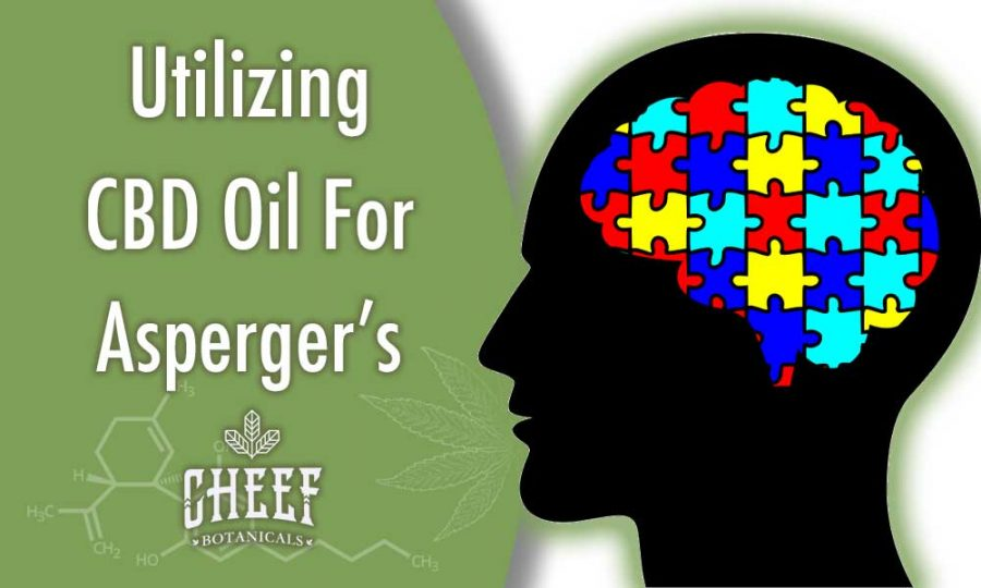 Utilizing CBD Oil For Asperger's