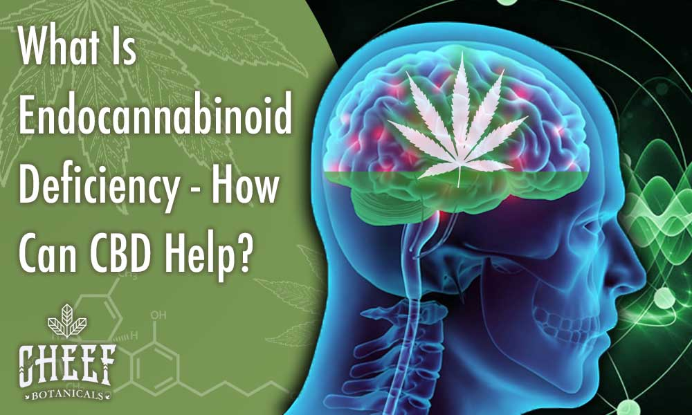 What is Endocannabinoid deficiency