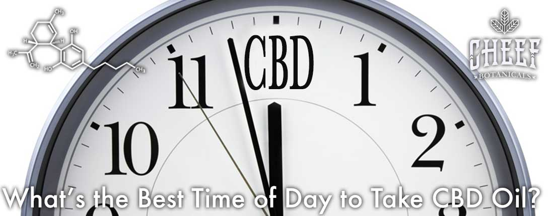 what is the best time of day to take CBD oil