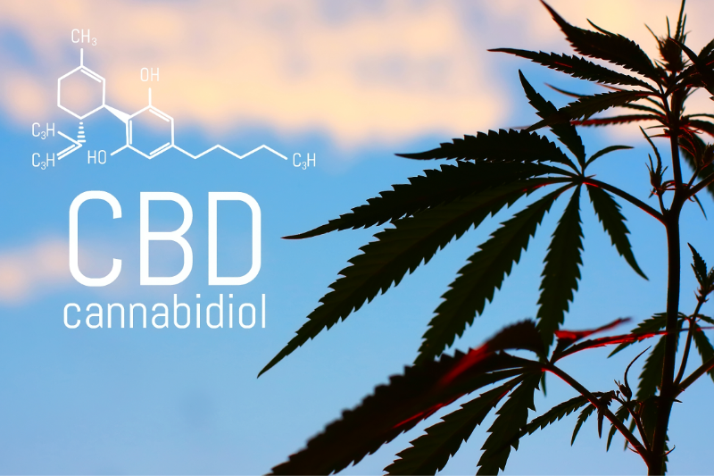 Does CBD Counteract THC