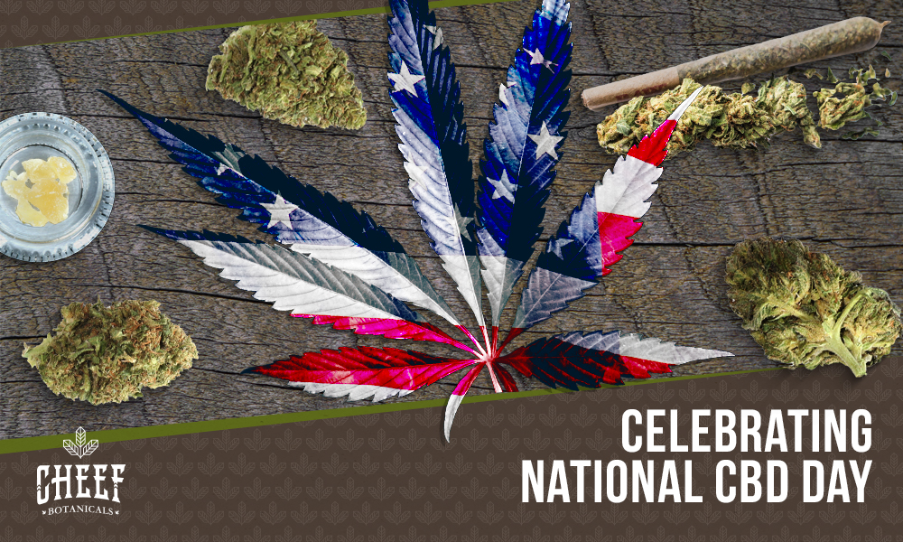 national-CBD-day-2020