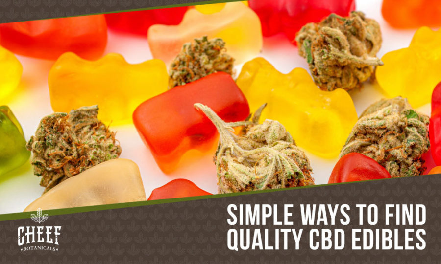 Find CBD Edibles Near Me [Your #1 Local Guide]