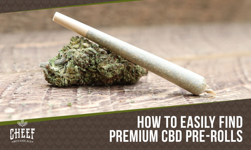 cbd pre rolls near me featured blog image