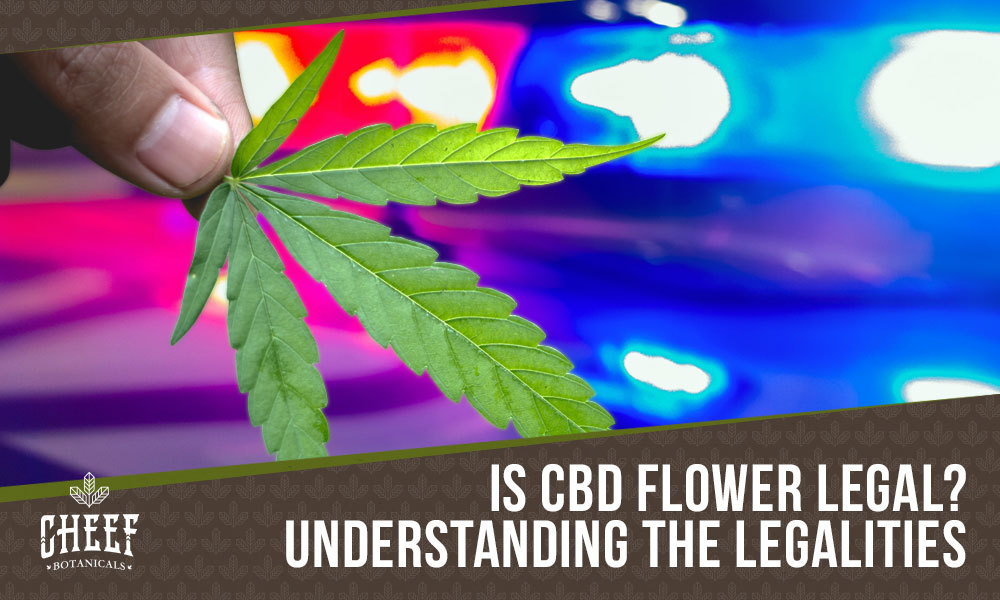is cbd flower legal featured blog image