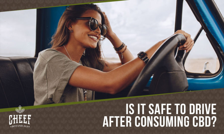 CBD And Driving: Is It Safe & Is It Legal?
