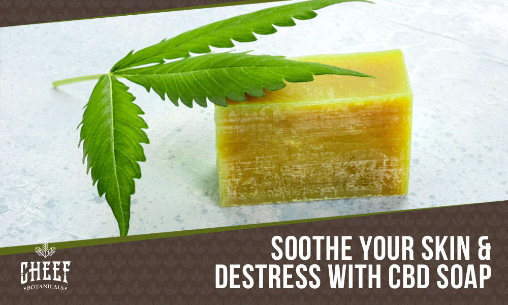 cbd soap featured blog image