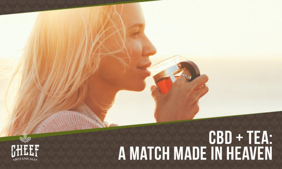 The Best CBD Tea | All-Natural, Highly Beneficial, & Delicious!