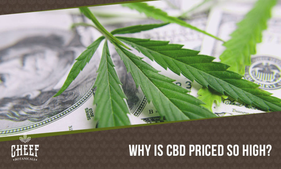 Why Is CBD So Expensive? The Full Breakdown Of Cannabidiol Production