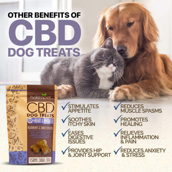 more benefits of CBD