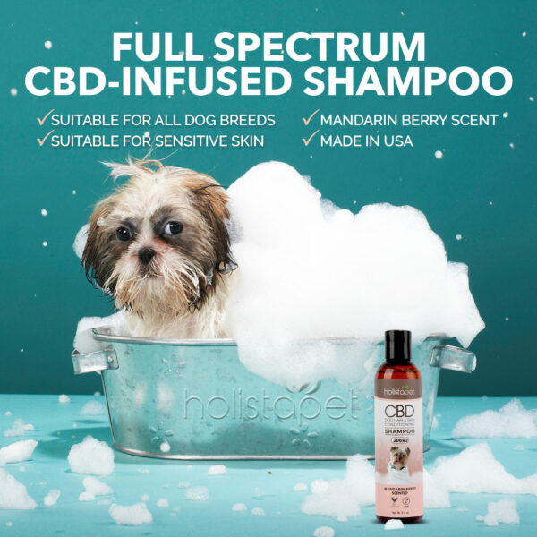 CBD shampoo benefits