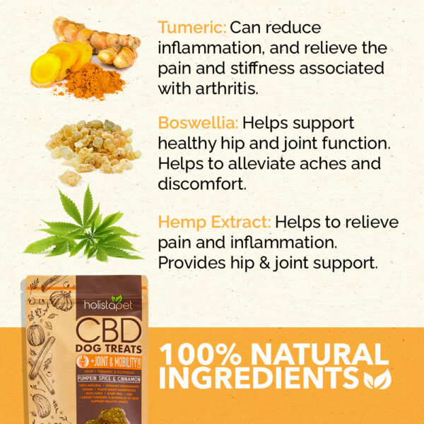 HolistaPet Joint and Mobility ingredients