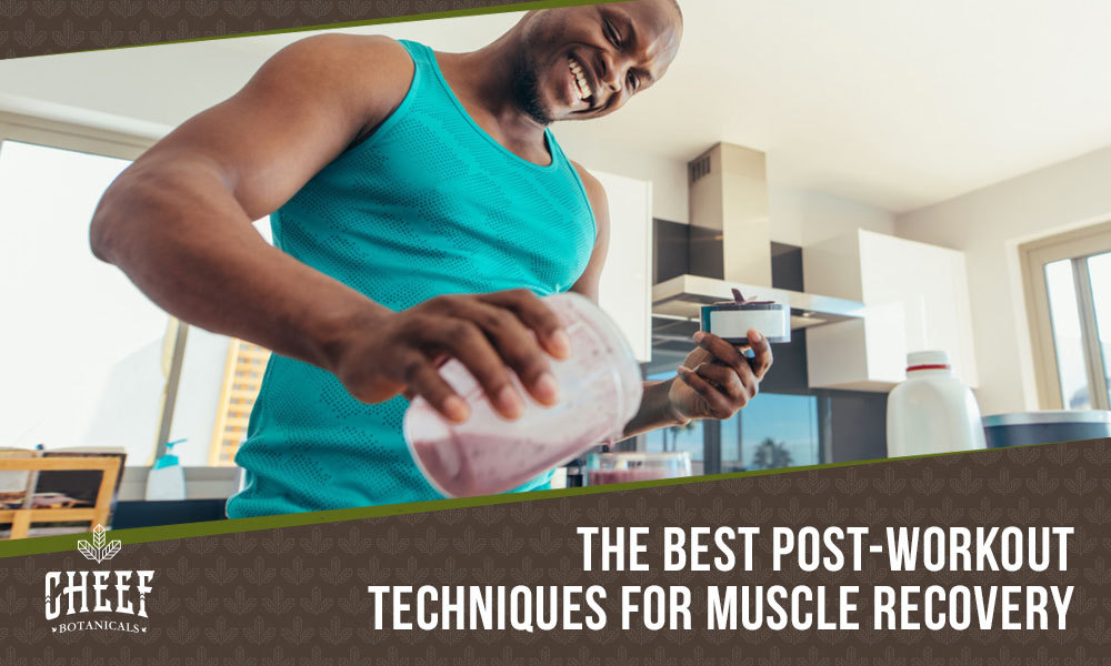 muscle recovery featured blog image