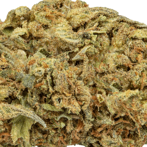 Gorilla Glue Closeup Product