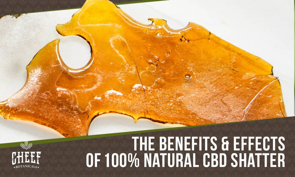cbd shatter featured image