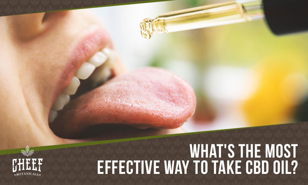 best way to take cbd oil featured blog image
