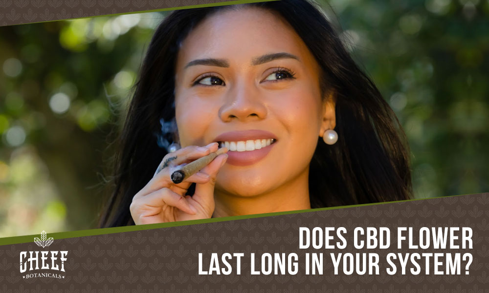 how long does cbd flower stay in your system